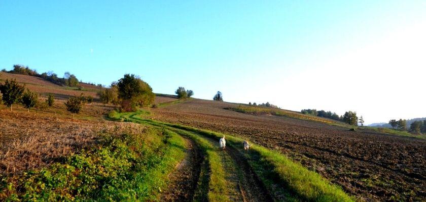 Il Grande Cammino del Monferrato