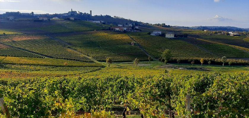 Grande Cammino del Monferrato